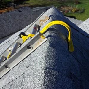 Swivel Head Ladder Hook